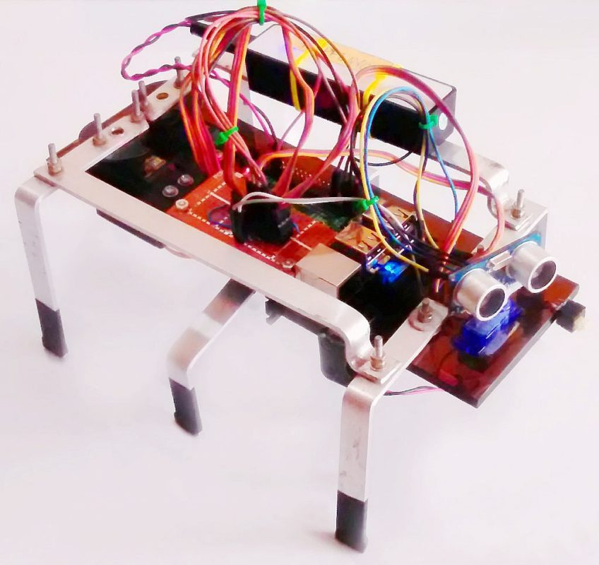 Make a Hexapod Walking Robot With Raspberry Pi - Rmigo
